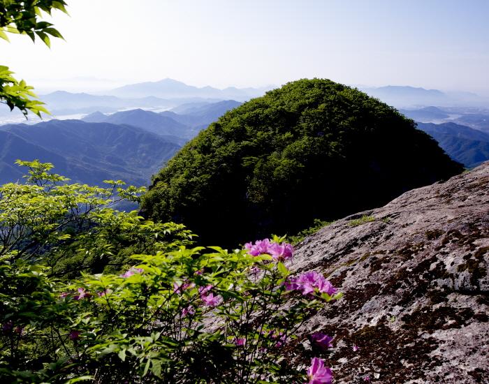 백운산 자연 휴양림
